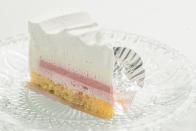 concept_cake_03